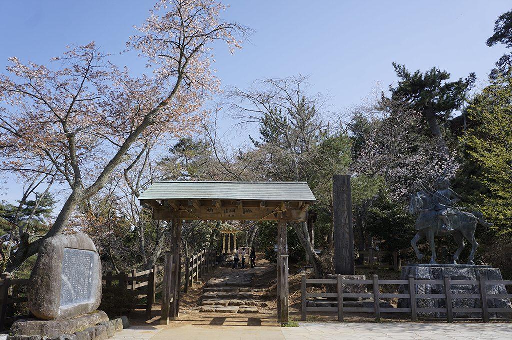 勿来の関公園の桜
