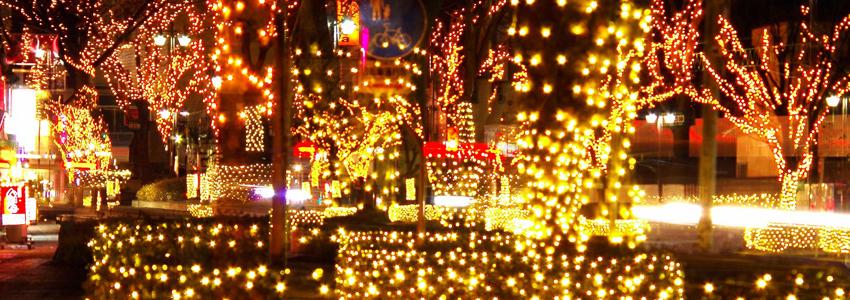 2015 恋人たちのXmasツリー 陣屋通りイルミネーション-伊達市保原町陣屋通り-