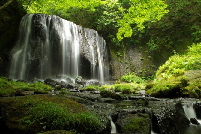 お祭りもいよいよ本格化!福島の夏の風物詩を堪能しよう《週刊福島TRIP8/3〜8/7》