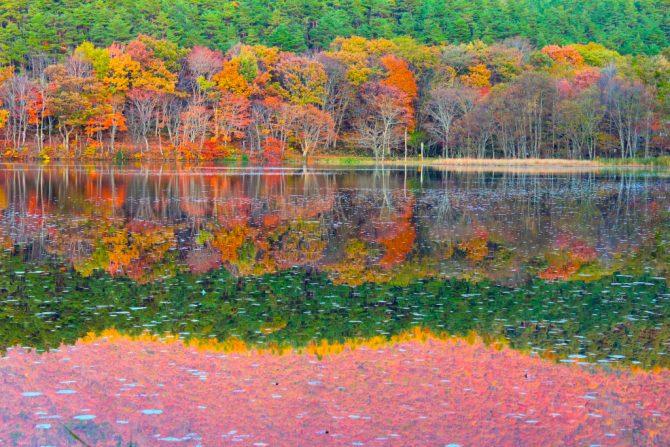 水鏡好き必見! 「紅葉の水鏡」が美しい秋の福島・絶景スポット『曲沢沼』&『観音沼』