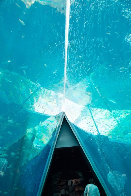 三角トンネル2