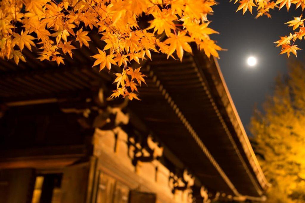 白水阿弥陀堂(寺院)3