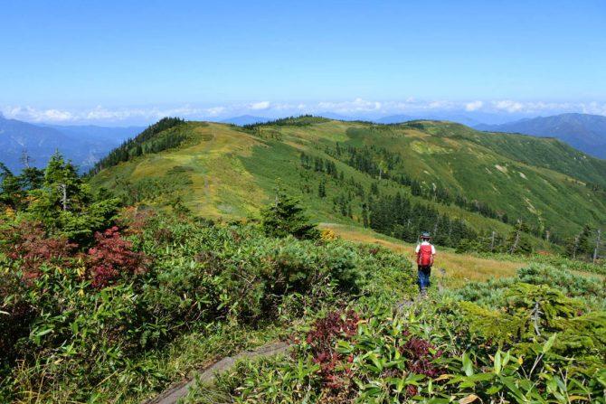 秋山シーズン到来!日本百名山「会津駒ヶ岳」に広がる大湿原と草紅葉は必見