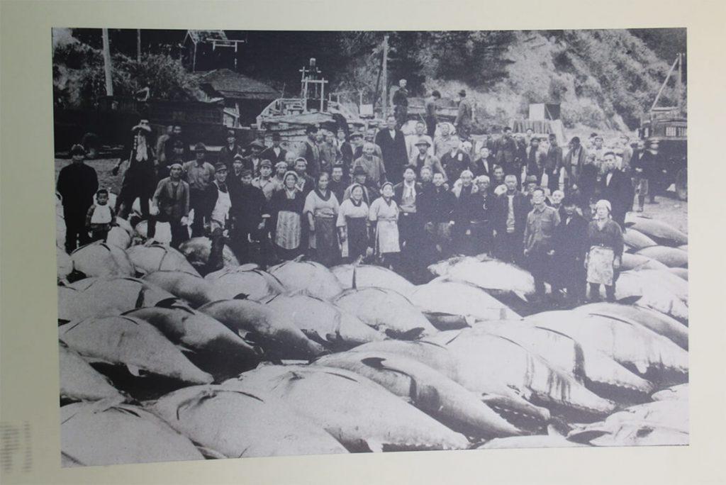 塩屋埼灯台の歴史