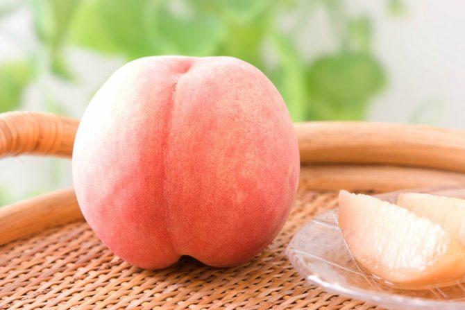 フルーツ王国・福島の「桃」を味わう! 他《週刊福島TRIP8/17~8/21》