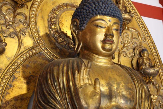 約150年ぶりに蘇った薬師如来坐像を見に「史跡慧日寺跡」に行ってみた