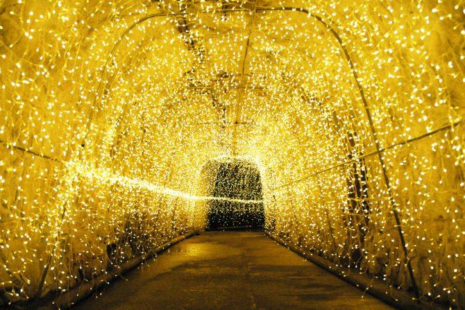 クリスマス近し!  色づく冬の風物詩・福島のイルミネーション6選