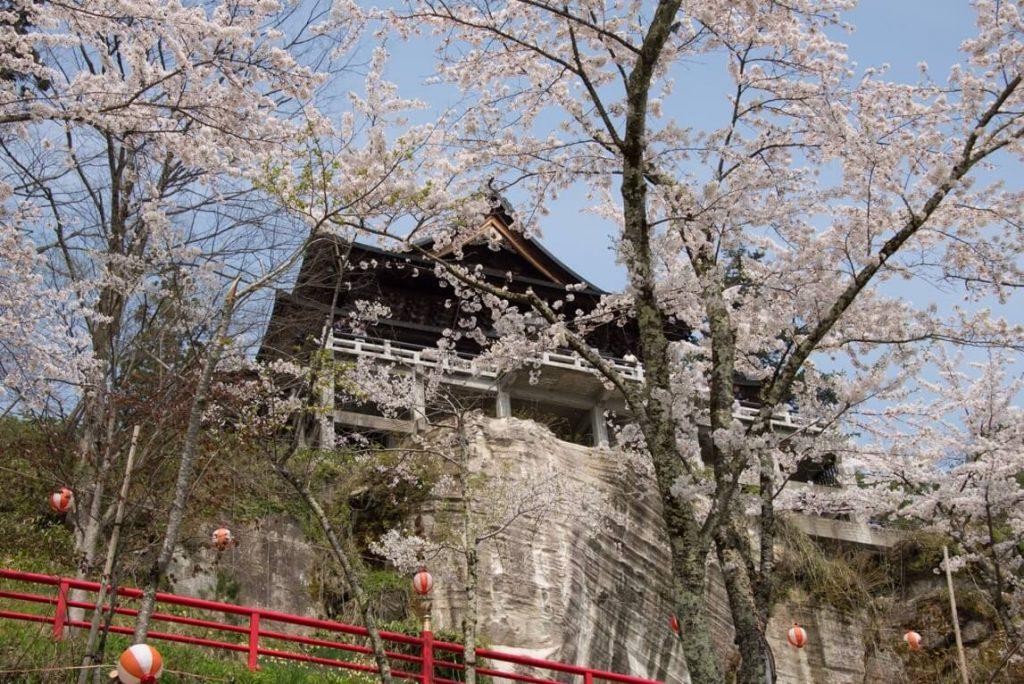 福満虚空蔵尊円蔵寺の桜