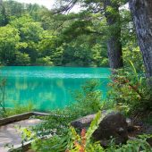 Is this sight really Japan? The emerald-green of the Goshiki-numa(lake) is too beautiful for a Japanese lake.