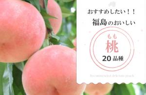 桃の季節が始まる!おすすめしたい福島の桃20品種+2【評価ガイド付き】